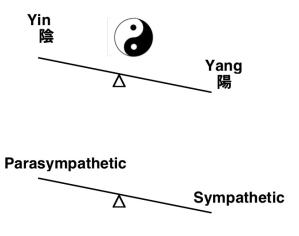 Ying anf Yang